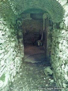 Vercurago sotterranea